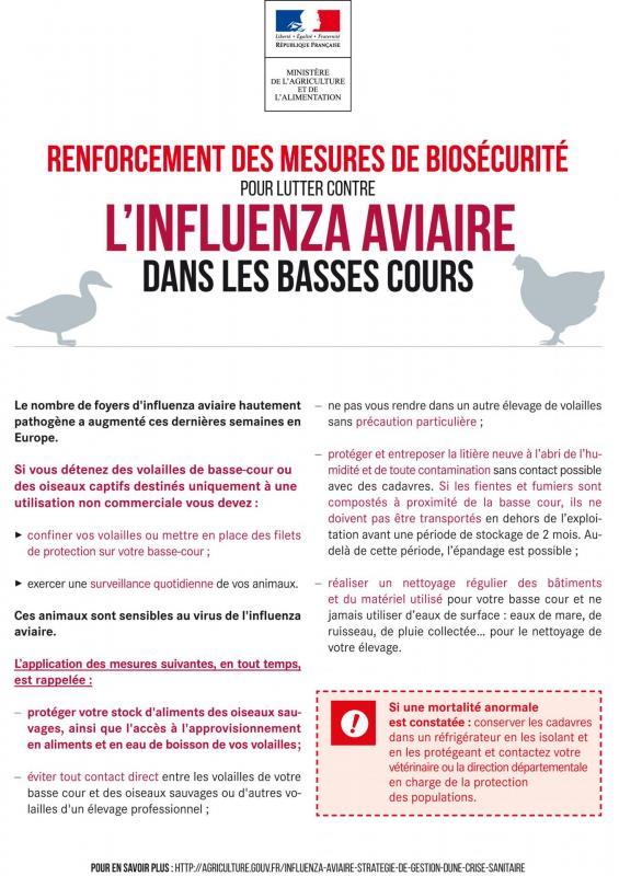 Affiche basses cours renforcement des mesures de biosecurite influenza aviaire